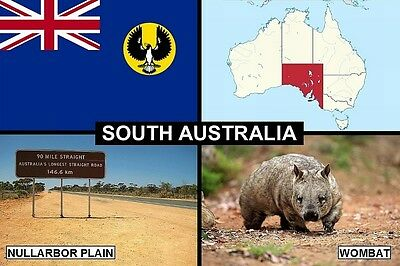 SOUVENIR FRIDGE MAGNET of THE STATE OF SOUTH AUSTRALIA & NULLARBOR & WOMBAT