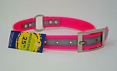 """#110D-REFLECT 21/""""  BLUE DOG COLLAR FREE BRASS NAMEPLATE VISIBLE REFLECTION"""