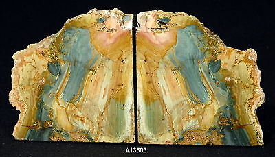 """Jasper """"Picture Rock"""" Bookends 11 3/4"""" wide, 6 1/4"""" tall, 1 5/8"""" thick 8.6 lbs"""