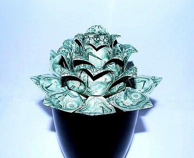 Money Origami lotus water lily flower 12 real $1 bills Gift Decor