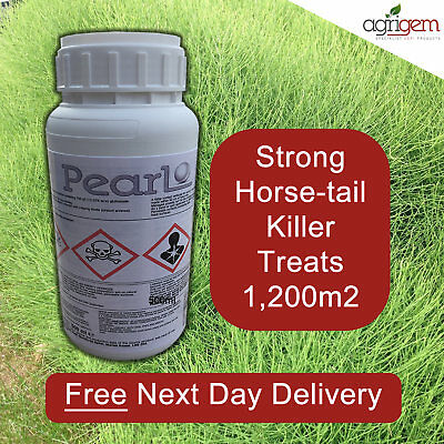 KILL MARES TAIL HORSE TAIL OTHER WEEDS WITH WHIPPET/PEARL WEED KILLER 0.5ltr