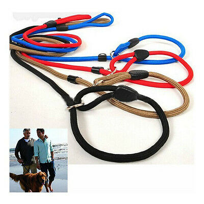 Adjustable Traction Collar Pet Dog Leash Slip Lead Strap Nylon Rope For Training