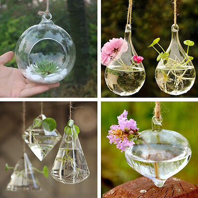 Luxury Hanging Glass Flower Plant Vase Terrarium Container Pot Home Garden Decor