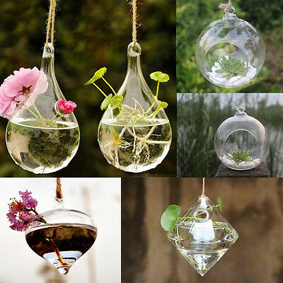 Fashion Clear Flower Hanging Vase Planter Terrarium Container Glass Home Decor
