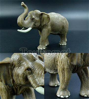 Realistic Asian Elephant Wild Animal Figure Solid Plastic Toy Model