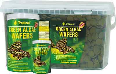 TROPICAL*GREEN ALGAE WAFERS *sinking wafers with spirulina for algae eaters • EUR 6,57