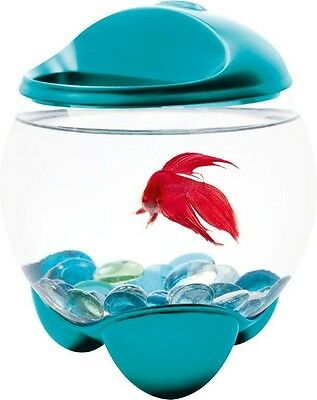 Tetra Betta Bubble Bowl with LED Light for Aquariums, Clear crystal-glass /blue