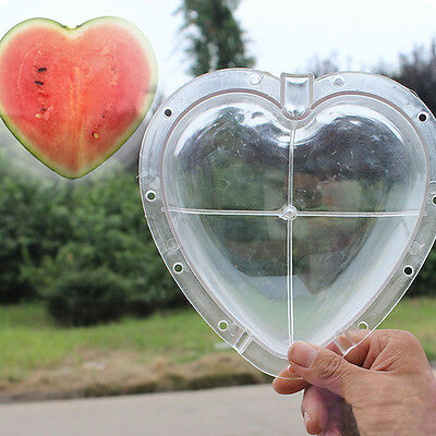 Heart-shaped Watermelon Shaping Mold Garden Fruit Growth Forming Mould Tool New