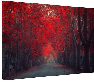 "STUNNING AUTUMN WOODLAND RED TREE CANVAS PICTURE WALL ART LARGE 20x30"" 1033"