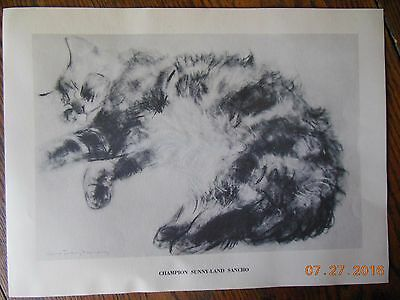 PRINT Cat Clare Turlay Newberry CHAMPION SUNNY-LAND SANCHO Drawing Frame Ready
