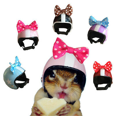 Pet Hamster Ferret Squirrel Parrot Helmet Bow Accessories Toy Small Animals New