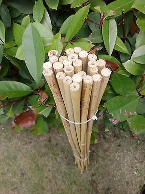 "25pcs 35"" Garden Flower Bamboo Pole Bamboo Stake Planting Support"