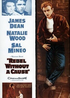 Rebel Without a Cause 8x10 11x17 16x20 24x36 27x40 Movie Poster Vintage Dean A