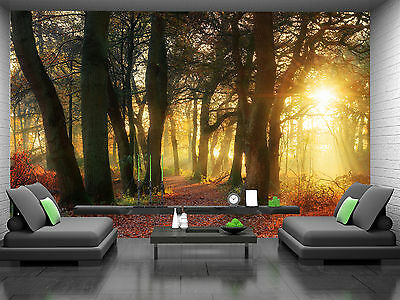 Forest Gold Wall Mural Photo Wallpaper GIANT DECOR Paper Poster Free Paste