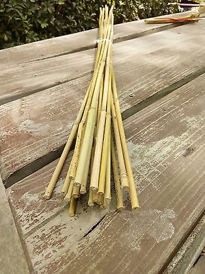 "25pcs 35.5"" Gardening Bamboo Stakes 90cm Bamboo Poles Small Planting Support"