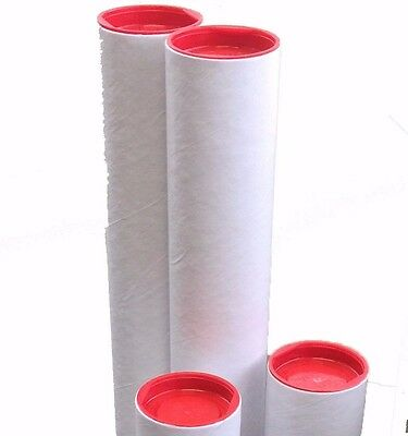 4x Cardboard White Mailing Tube 450x60x1.8mm A3 poster document mailer