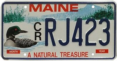 Real Number Plate Maine - USA - License Flat