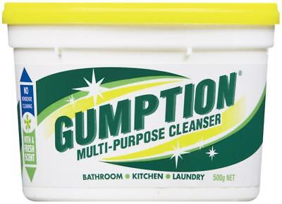 Clorox Gumption Multipurpose Paste Cleanser 500g