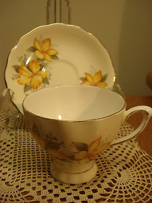 Colclough Pretty YELLOW FLORAL Gilded Tea Cup & Saucer England TR3