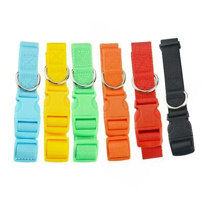 colorful Pet collar for GPS GSM GPRS tracker TK-STAR TK909 Nice dog cat collar