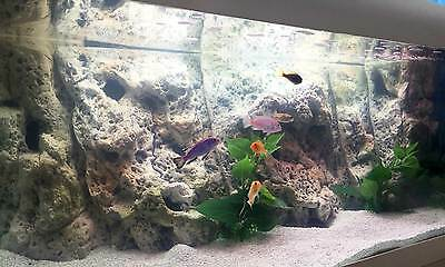 3D LIMESTONE BACKGROUND MODULES WITH CAVES FOR FISH TROPICAL MARINE TANK 80x40cm