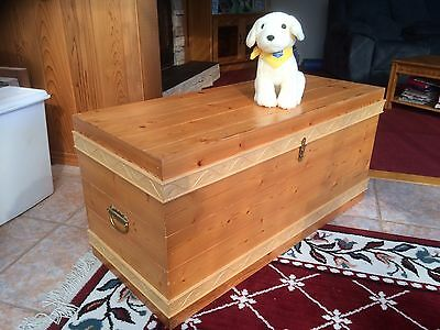 Children's Toy or Clothes Chest