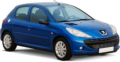 Manuale Officina Peugeot 206 1998-2012 Workshop Manual Service