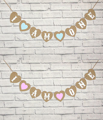 I Am One,i Am Two,first Birthday Boy Or Girl Party Garland Bunting
