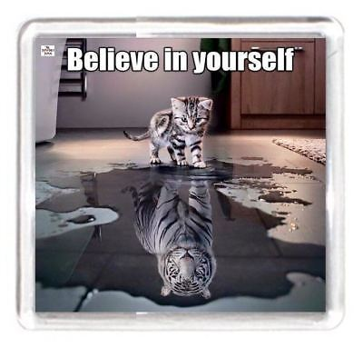 Look Believe Yourself Reflect Puddle Cat Kitten Tiger Animal Pet Fridge Magnet