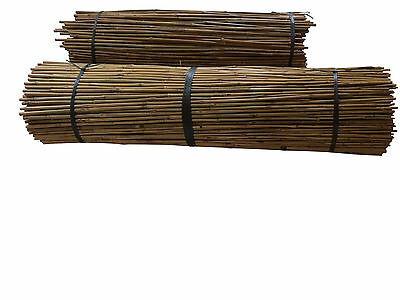 2FT 3FT 4FT BAMBOO CANES NEW GARDEN PLANT SUPPORT STICKS  8-10mm Quality Strong