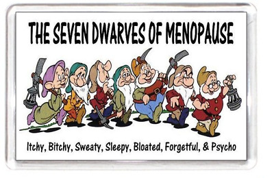 Fridge Magnet Menopause Period Mood Seven Dwarfs Film Snow White Quotes Saying