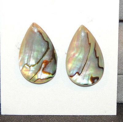 Abalone Cabochon 13x21mm with 3mm dome Set of 2 (11064)
