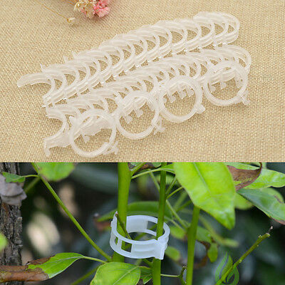 20 Pcs Plant Flower Vines Vegetable Loops Clips Fastener Fix Garden Accessories