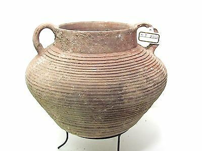 herodian terra-cotta  pot ancient pottery p2350