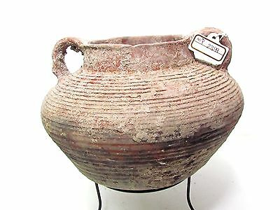 herodian terra-cotta  pot ancient pottery p2399