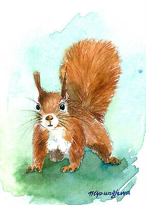 ACEO print- A pause, Art print of Squirrel watercolor painting by Anna Lee