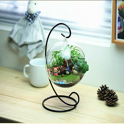 8cm Hanging Glass Flowers Plant Vase Stand Holder Terrarium Container ST3