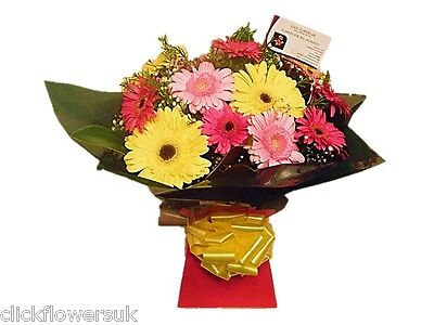 Fresh Real Flowers Delivered Gerbera Selection Florist Choice Mixed Bouquet
