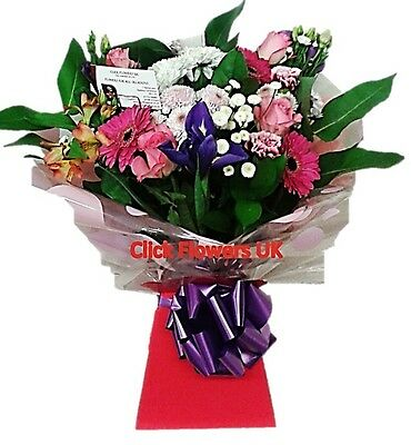 FRESH REAL FLOWERS Delivered Click Selection All Occasions Bouquet
