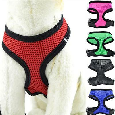 Soft Mesh Puppy Small Dog Lead Leash with Clip Pet Adjustable Harness Vest FI
