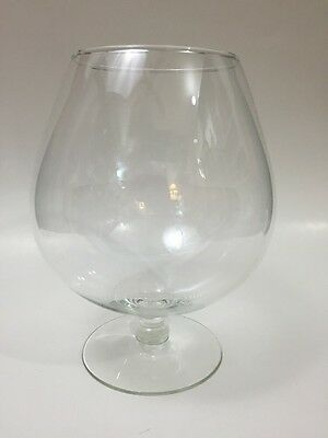 Large Brandy Snifter Glass 64 ounces 7.75 Inches Novelty Oversized Fish Bowl