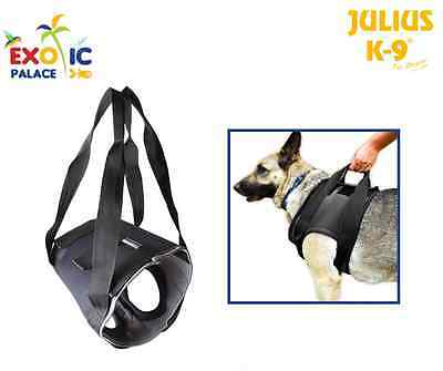Julius-K9 Supporto Anteriore Ortopedico Veterinario Per Zampe Cani Handicap Dog