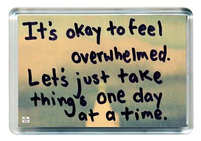 OK Feel Emotion Overwhelmed Day Slow Achieve Quote Saying Gift Present Novelty