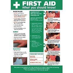 First Aid Laminated Poster Sign A2