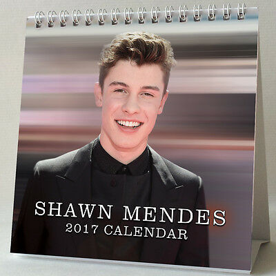 Shawn Mendes Desktop Calendar 2017 NEW Treat You Better