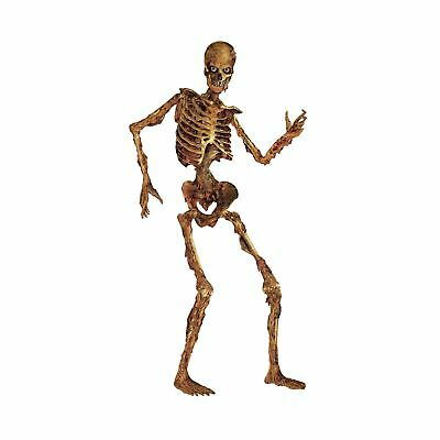 Beistle Jointed Skeleton Figurine for Party, 6-Feet