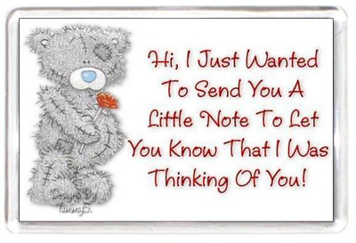Fridge Magnet Me To You Tatty Love Teddy Flower Note Cute Thinking Quote Gift