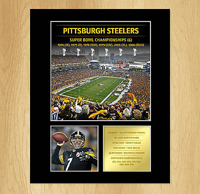 Pittsburgh Steelers Superbowl Mounted Photo Display