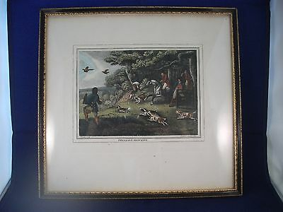 Antique Coloured Hunting Print Pheasant Hawking Samuel Howett Published 1799
