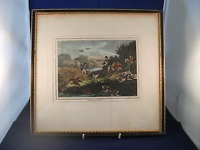 Antique Coloured Hunting Print Duck Hawking After Samuel Howett Published 1799